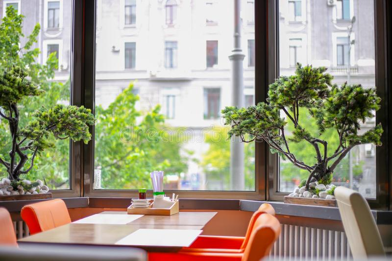 Interior with beautiful bonsai. Restaurant with panoramic windows stock photography
