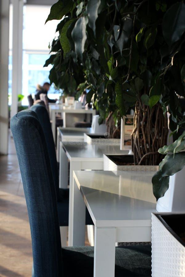Interior bonito dos palhaços do café em Novosibirsk com tabelas e as cadeiras brancas com sala de jantar moderna imagem de stock