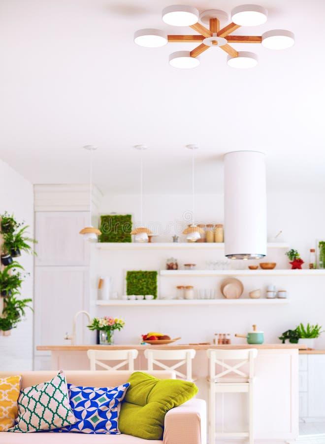 Interior brillante de la sala de estar con la isla de cocina, el sof?, y los estantes de la pared imagen de archivo