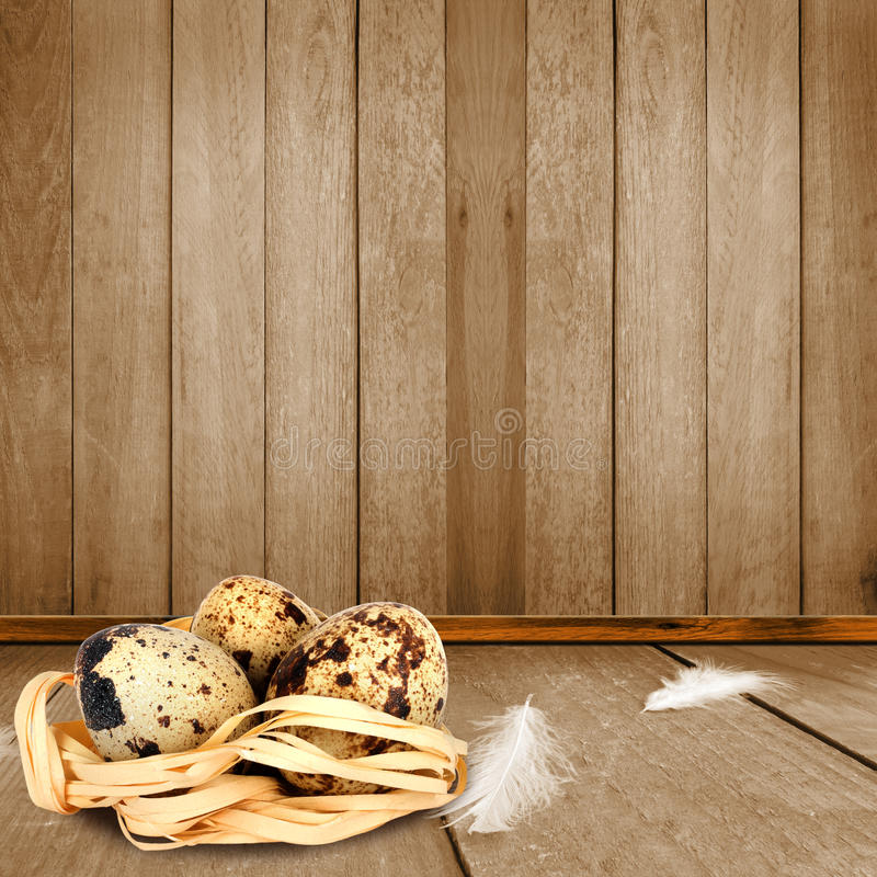 Download The Interior Of The Chicken Coop With Quail Eggs Stock Photo    Image Of Floor