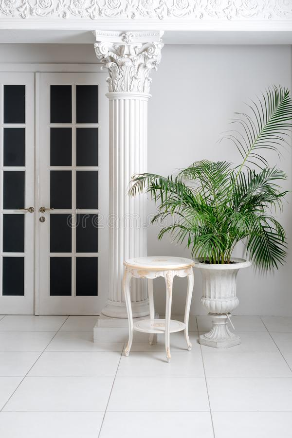 Interior clásico blanco de lujo con las columnas y las palmas foto de archivo