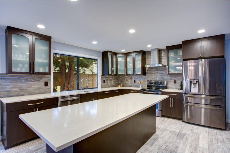 Interior contemporáneo actualizado del sitio de la cocina en los tonos blancos y oscuros fotografía de archivo