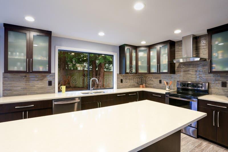 Interior contemporáneo actualizado del sitio de la cocina en los tonos blancos y oscuros imágenes de archivo libres de regalías