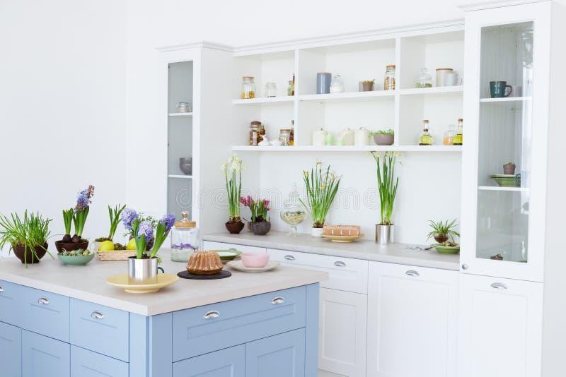 Interior da cozinha, decoração, tempo de mola fotos de stock royalty free