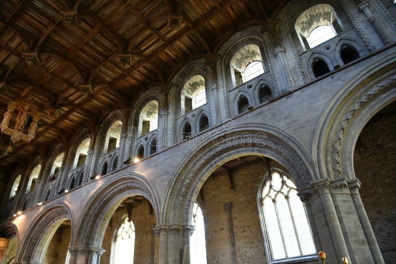 Interior de la catedral de St David foto de archivo