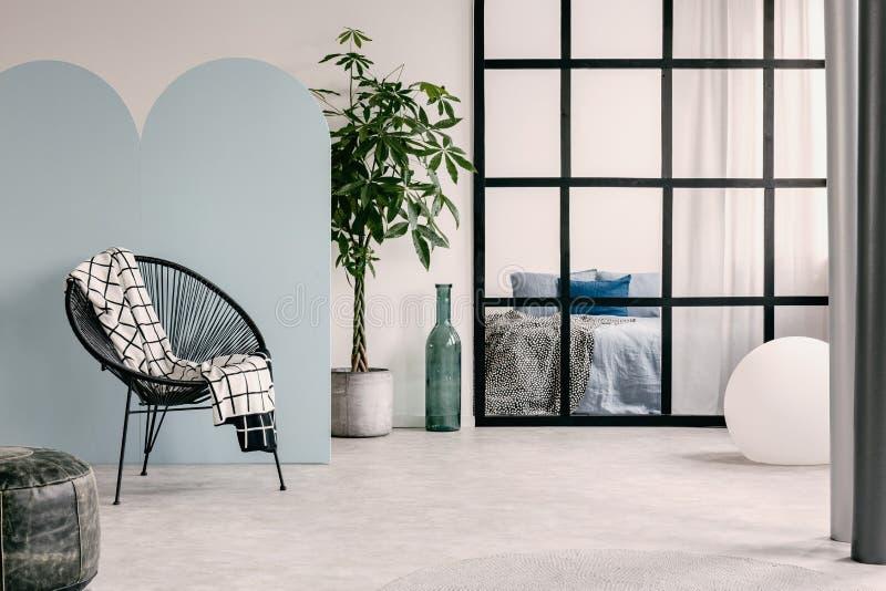 Interior de moda de la sala de estar con la pared blanca y azul, la planta verde en pote y la silla de moda imagenes de archivo