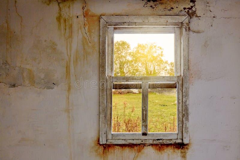 Interior de uma casa arruinada com a parede branca velha, suja e rachada e um quadro de janela quebrado com uma opinião verde do  fotos de stock