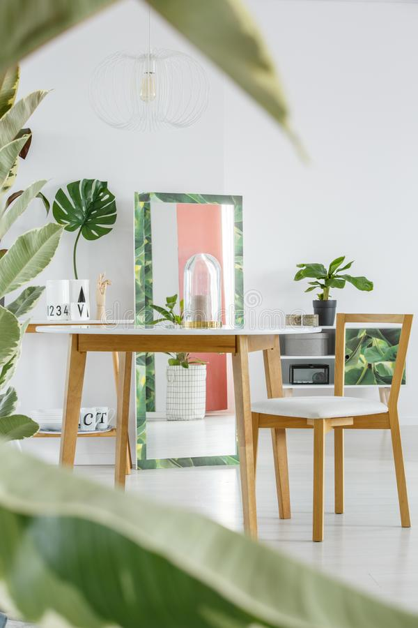 Interior Del Comedor Con El Espejo Foto de archivo - Imagen de ficus ...