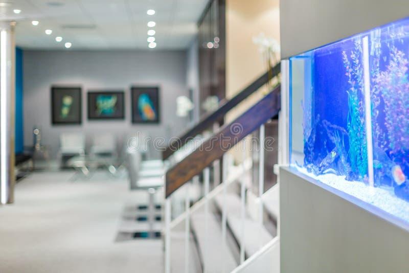 Interior design dell'ufficio con l'acquario fotografia stock