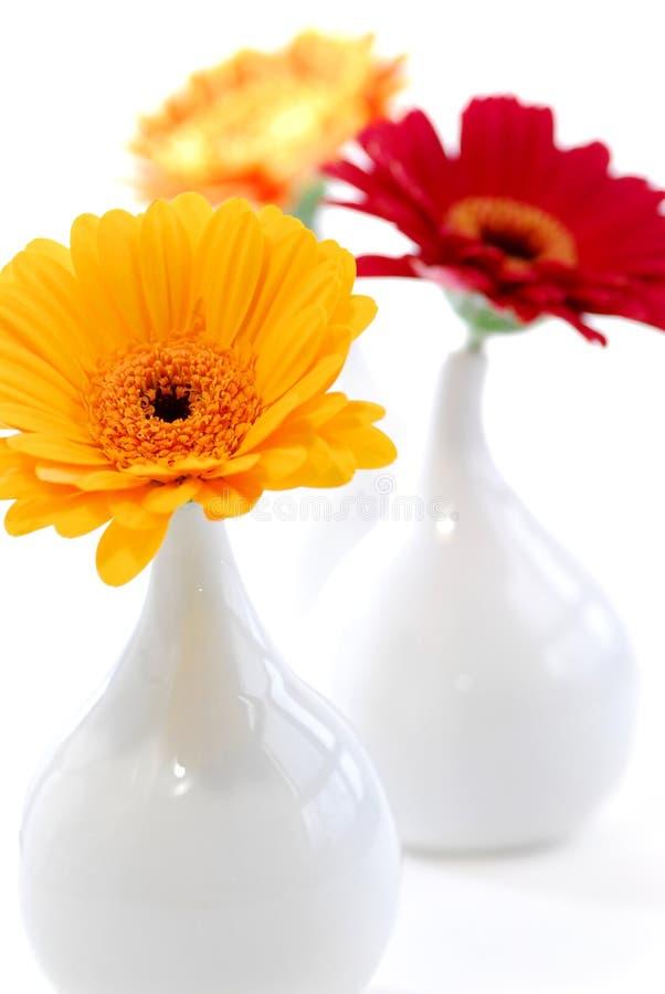 Interior design vases royalty free stock photo