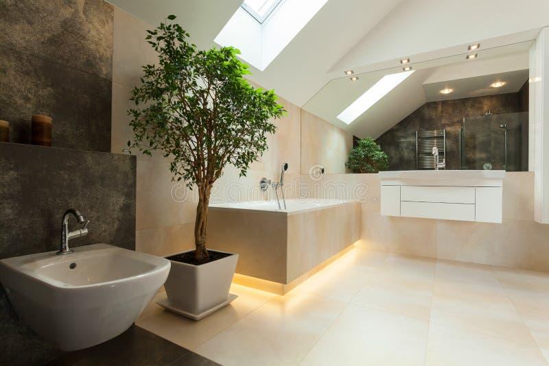 Interior do banheiro moderno imagem de stock