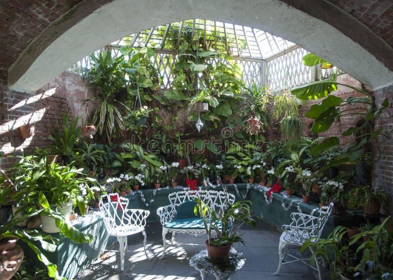 Interior do jardim botânico fotografia de stock