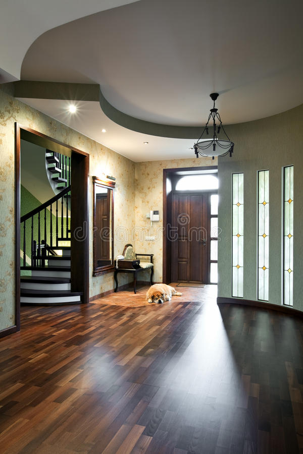 Interior of entrance hall with sleeping dog royalty free stock photography
