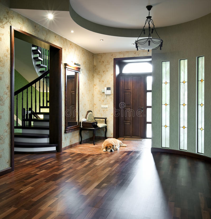 Interior of entrance hall with sleeping dog stock image