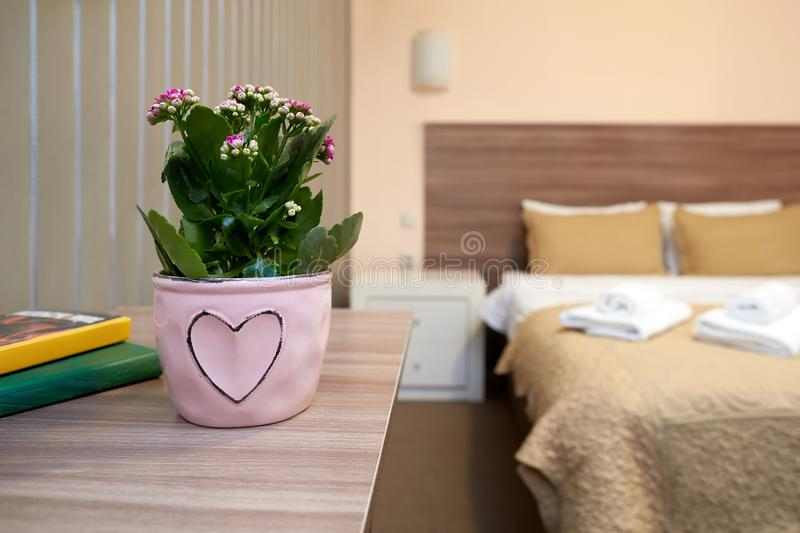 The interior of the hotel room in a classic style royalty free stock image