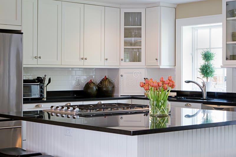 Interior kitchen royalty free stock image