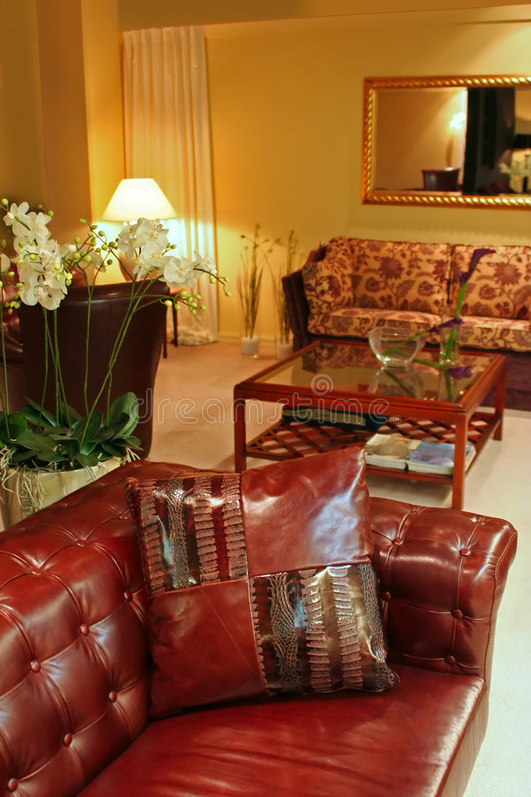 Download Interior With Leather Pillow Stock Photo - Image: 1940056