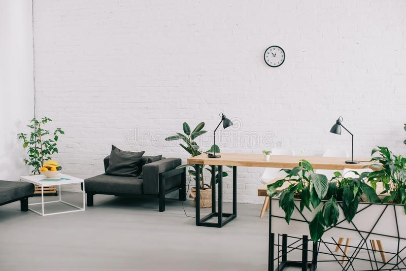 Interior of modern office with furniture, plants and clock. On wall stock photos