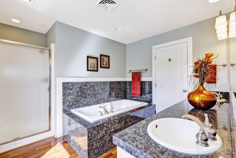 Interior Moderno Del Cuarto De Baño Con La Ducha De ...