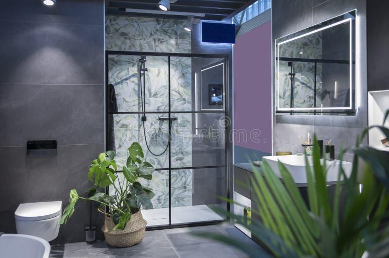 Interior moderno del sitio del baño fotos de archivo libres de regalías