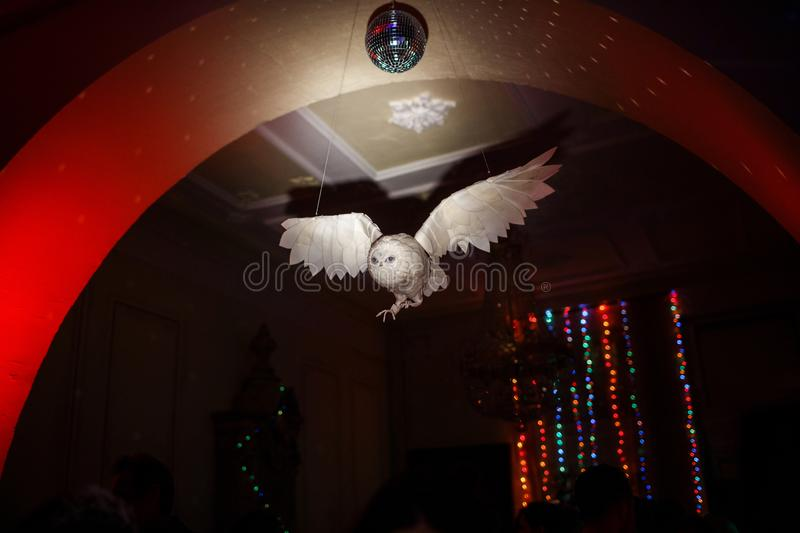 The interior of the party - an owl hanging from the ceiling royalty free stock images