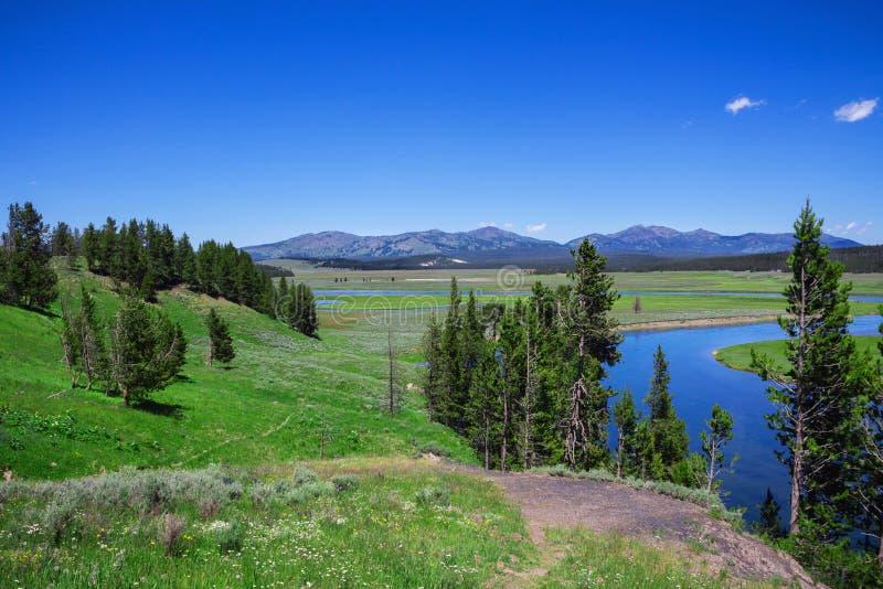 The interior space yellowstone national parks, USA.  stock photos
