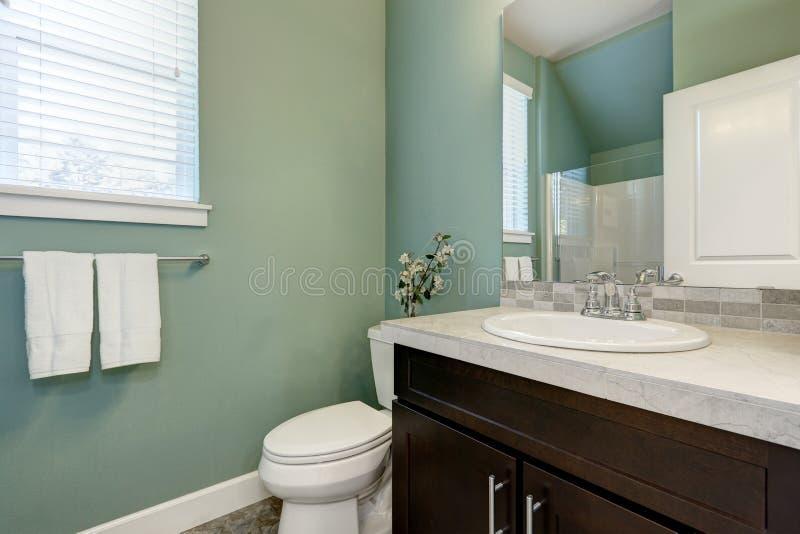 Interior verde do banheiro da hortelã meio imagem de stock