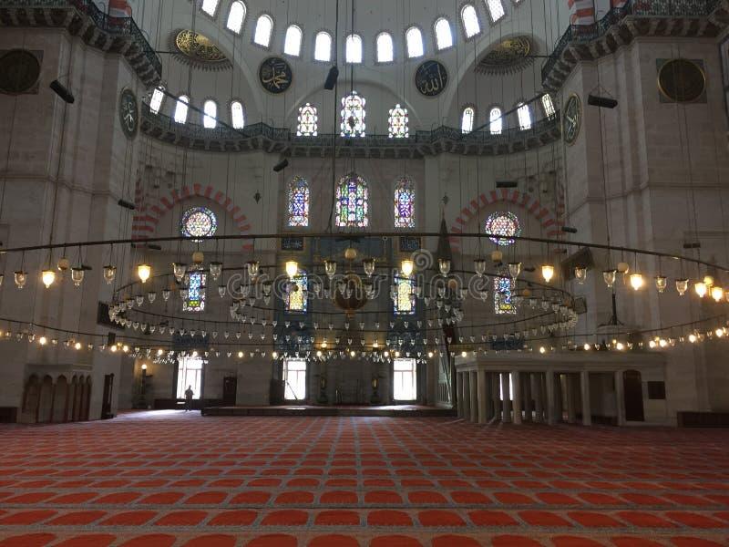 Interiore della moschea blu Moschea blu a Costantinopoli Moschea blu nel parco di Sultanahmet La più grande moschea a Costantinop fotografia stock libera da diritti