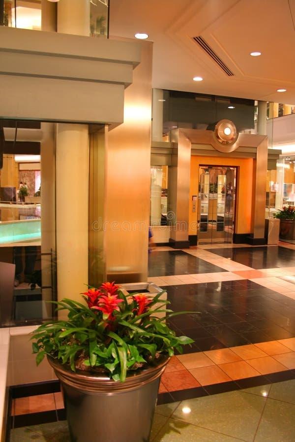 Interiores da alameda de compra imagem de stock royalty free