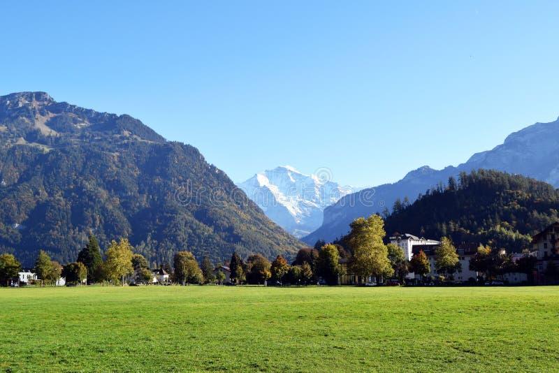 Interlaken, Suíça, jardim imenso do gramado cercado por montanhas gigantes fotografia de stock