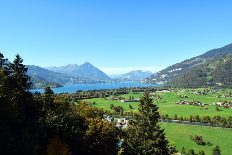 Interlaken, Zwitserland, Threes, Bergen, Meer, Gras en Huizen royalty-vrije stock foto