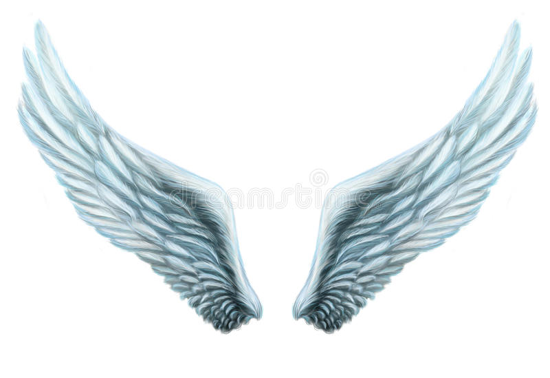 Internal fantasy white wing plumage. Isolation. royalty free illustration