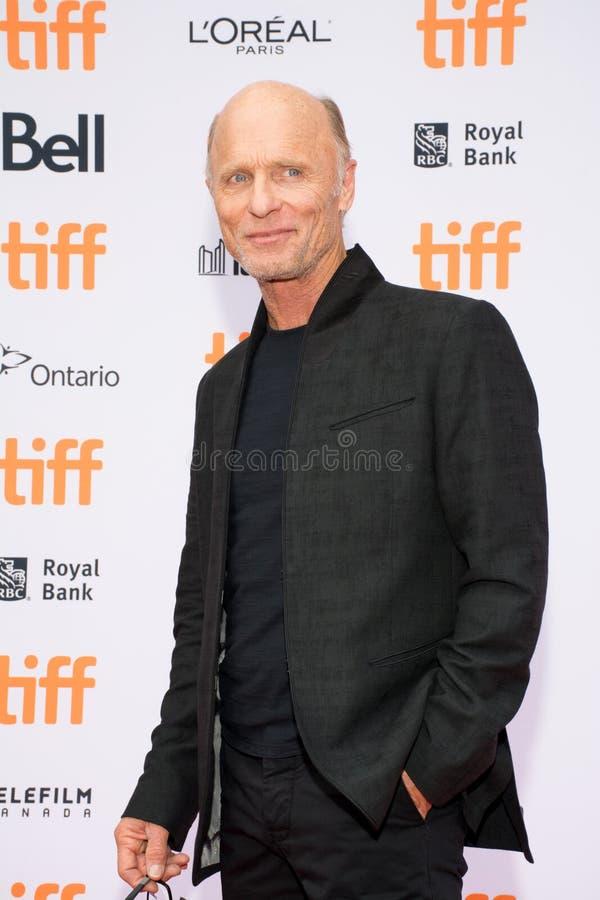 2017 Internationaal de Filmfestival van Toronto - de Première van ` Kodachrome ` stock foto