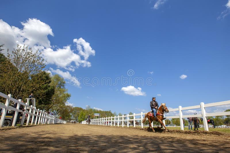 International Conquering Festival Rahvan Horse Racing royalty free stock photo