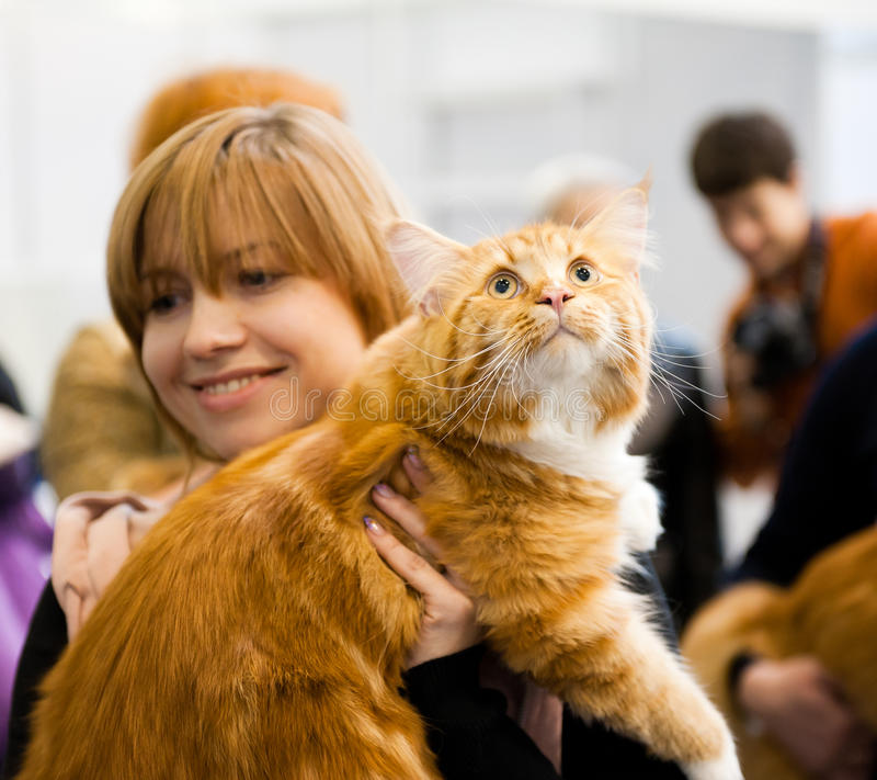International exhibition of cats. MOSCOW - MARCH 6: Unidentified people visit an international exhibition of cats Catsburg on March 6, 2011 in the exhibition stock photo