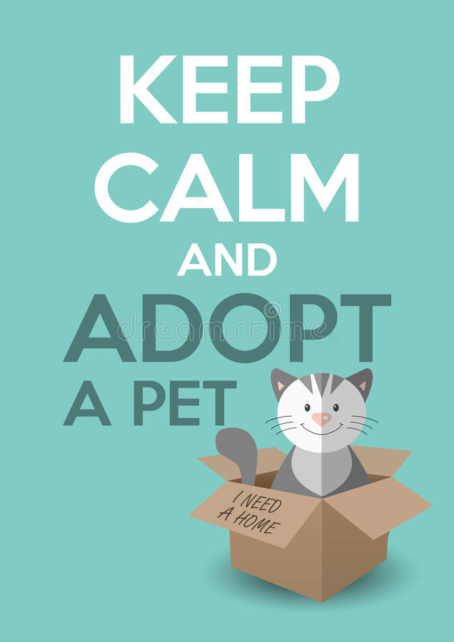 International homeless animals day. Cute kitten in a box. Keep calm an adopt a pet text royalty free illustration