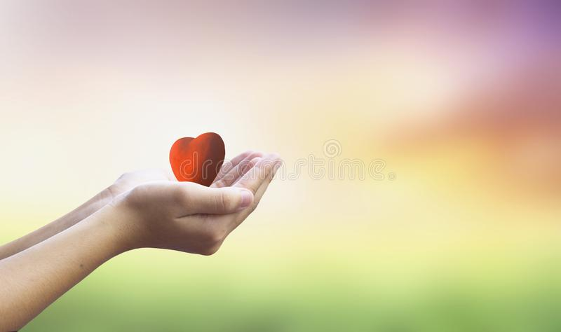 International Human Solidarity Day concept: hands holding red heart health insurance. 2019 concept: Happy New Year stock photo