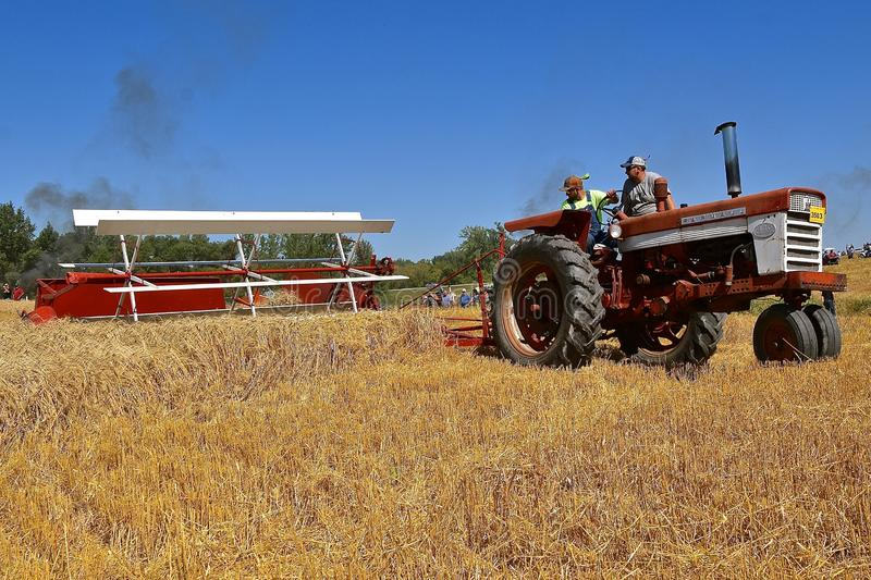 International 460 tractor swathing grain. ROLLAG, MINNESOTA, September 1, 2018: An old International 460 tractor and swather participates in a field stock photography