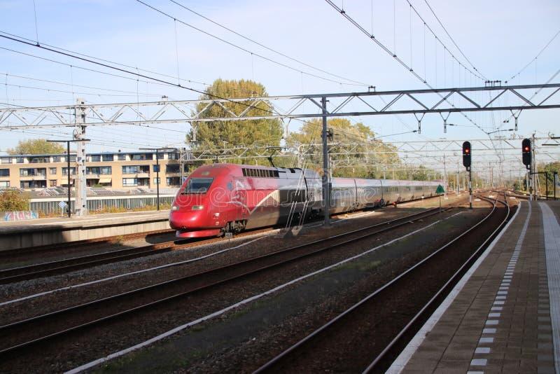 Internationale trein Thalys tussen de passenpost van Amsterdam en van Parijs van Leiden royalty-vrije stock afbeeldingen