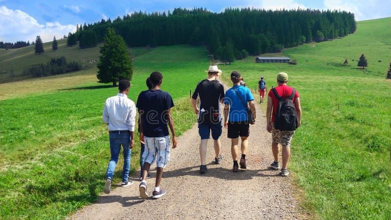 Internationales Gehen deutschland Schwarzer Waldregion Feldberg lizenzfreies stockfoto