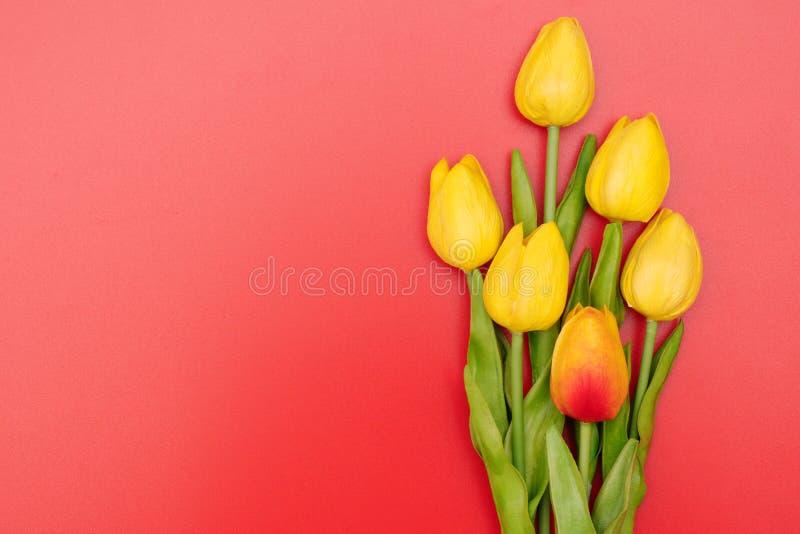 Internationella kvinnors dag med tulpanblommor på röd bakgrund arkivbild