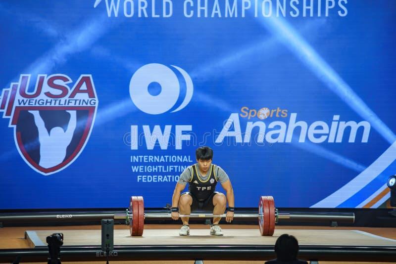 2017 internationella mästerskap för tyngdlyftningfederationvärld royaltyfria bilder