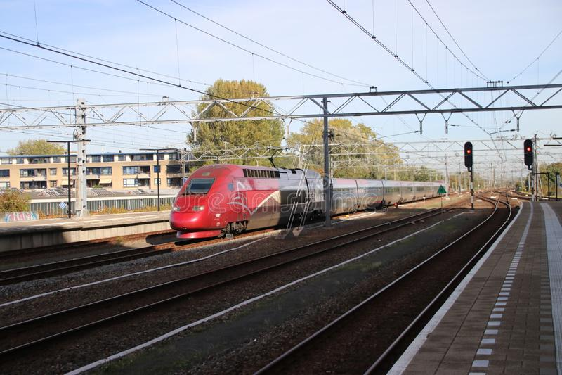 Internationellt drev Thalys mellan Amsterdam och Paris passerandestation av Leiden royaltyfria bilder