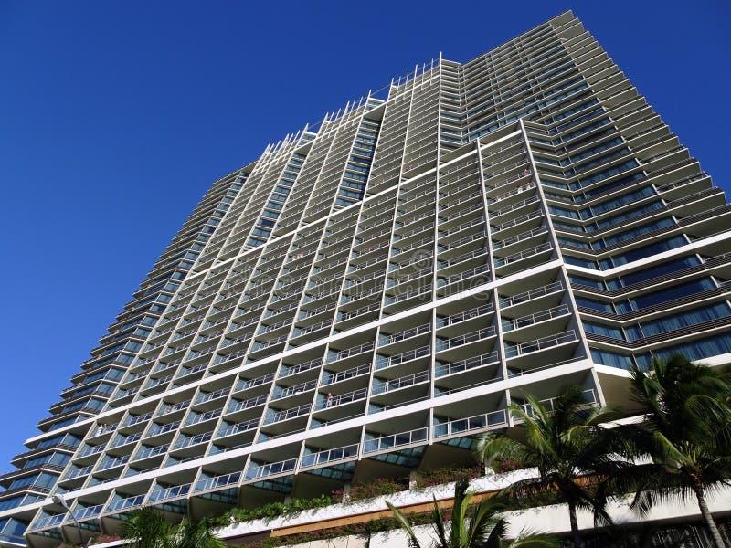 Internationellt hotell Waikiki för Iconic trumf med kokosnötpalmträd royaltyfria foton