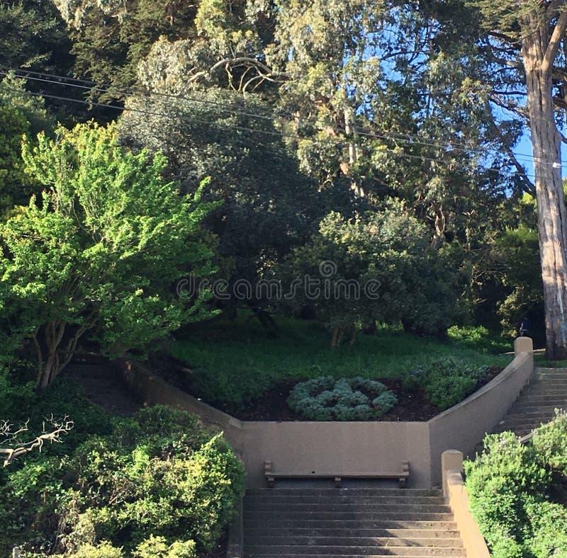 Internazionalmente - il simbolo di pace riconosciuto, al parco di Buena Vista, 1 immagini stock libere da diritti