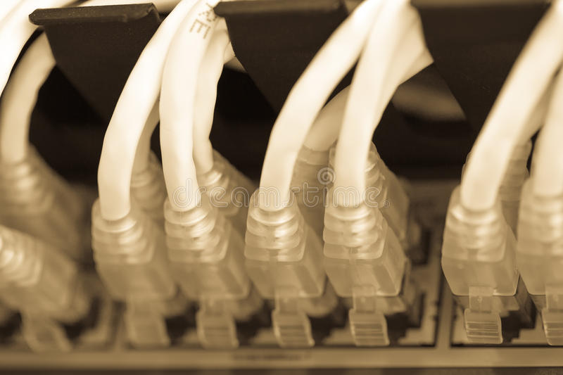 Download Internet Del Servidor Conectado Con Los Cables LAN Foto de archivo - Imagen de socket, conector: 41919822