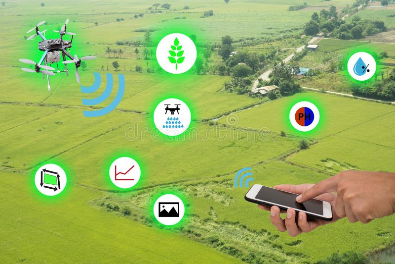 Internet di agricoltura thingsindustrial e del concetto d'agricoltura astuto, cellulare di uso dell'agricoltore ed applicazione a immagine stock