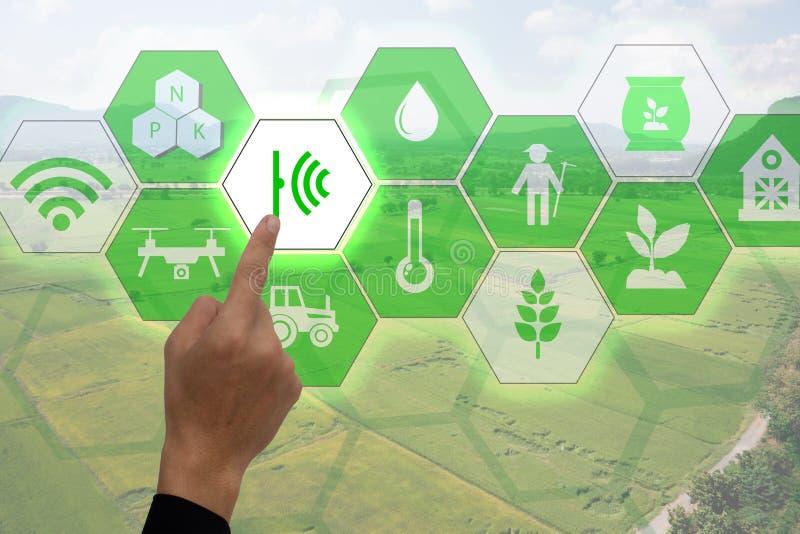 Internet do conceito do thingsagriculture, cultivo esperto, agricultura industrial A mão do ponto do fazendeiro a usar-se aumento fotos de stock