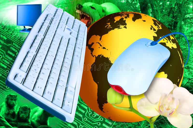 Download Internet jungle stock photo. Image of network, yellow - 6164934