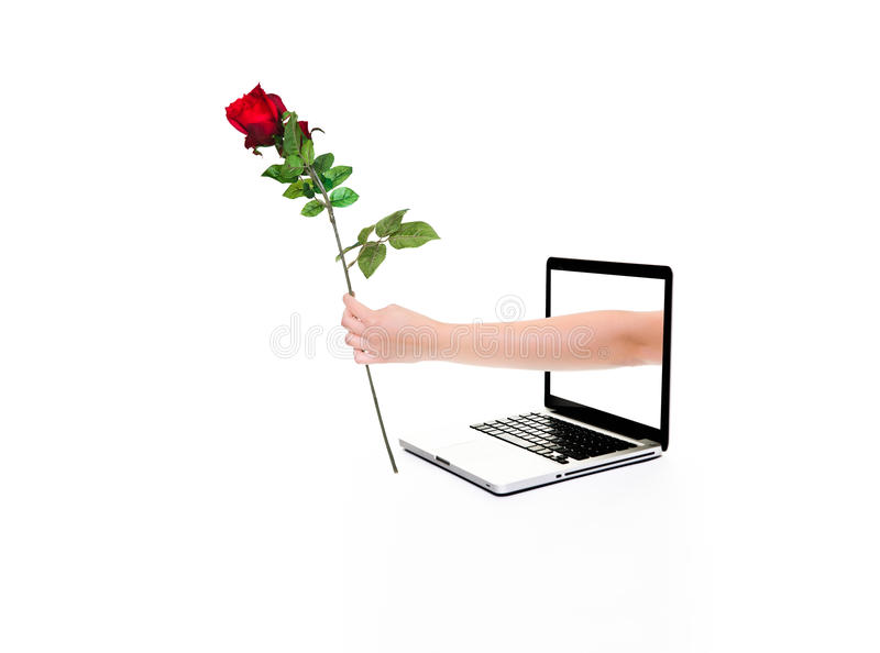 Download Internet love stock photo. Image of apple, keyboard, rose - 20473376